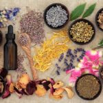 What is a Naturopath and what are they doing?