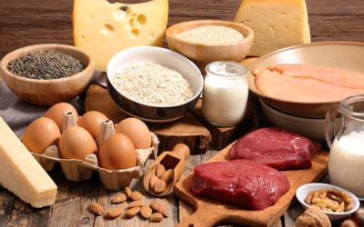 Top 10 Foods Highest in Protein – Protein Rich Foods
