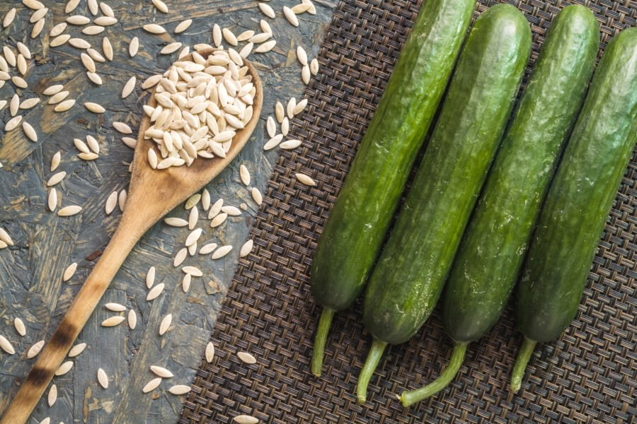 Health Benefits of Cucumber Seeds and Vegetable Seeds