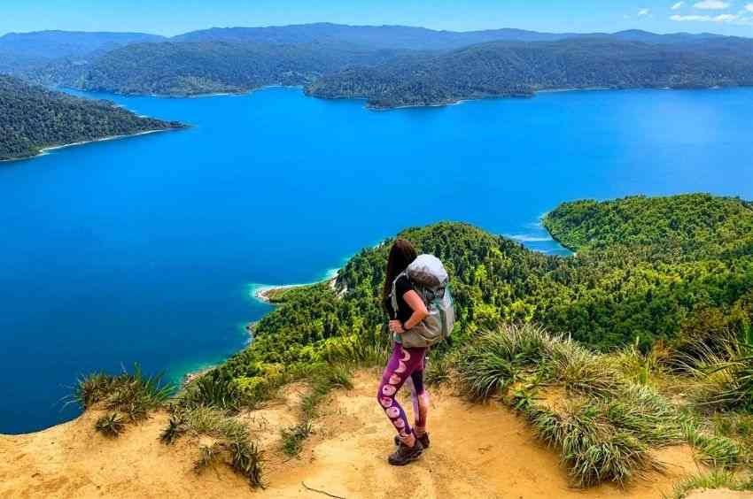 Choose Guided Coach Tours for New Zealand Vacations